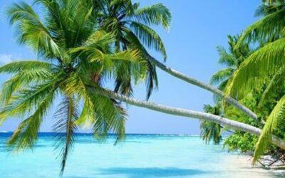 Punta Cana – Rep. Dominicana.